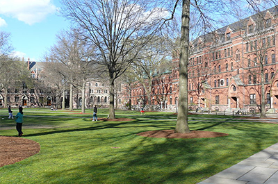 Yale University Old Campus © Ad Meskens/Wikimedia Commons/CC